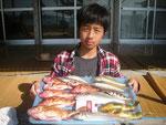 5月15日 ボート釣りで清田さん ガラカブ25㎝~18㎝・7匹 キス25㎝を頭に9匹