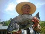 5月14日 ボート釣りで三嶋さん 良型チヌ46㎝