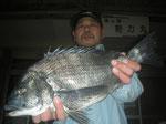 4月5日 初めての松島の磯釣りで松井さん 良型チヌ45.7㎝