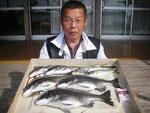 5月14日 ダゴチン釣りで宮村さん チヌ41㎝を頭に4匹 アジ25㎝を頭に3匹