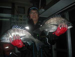 3月20日 磯から城迫さん 良型チヌ46.5㎝を頭に5匹