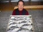 4月11日 ダゴチン釣りで島崎さん メイタ38㎝を頭に8匹・アジ20㎝前後5匹