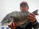 4月3日 ダゴチン釣りで宮本さん 良型チヌ48.5㎝