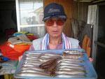 6月29日 キス釣りで配藤さん キス24㎝を頭に22匹 トラギス8匹