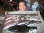 8月3日 ボート釣りで田中さん ヒラメ38㎝ タイ32㎝を頭に3匹 メイタ28㎝を頭に2匹 アジ2匹 バリ4匹
