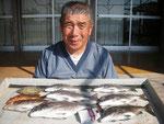 5月17日 ダゴチン釣りで東さん チヌ37㎝~30㎝を6匹 アイナメ・ハタ・カワハギ