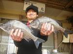 4月2日 磯釣りで垣原さん チヌ40㎝オーバーを2匹