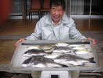 6月17日 ダゴチン釣りで中林さん 良型チヌ47㎝を頭に4匹 アジ7匹 カワハギ1匹