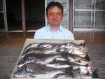 5月21日 ダゴチン釣りでAさん 良型チヌ45㎝~28㎝を11匹