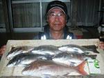 5月1日 磯釣りで吉住さん タイ38㎝ メイタ5匹