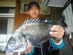 5月23日 磯釣りで橋口さん・富永さん 良型チヌ47㎝を頭に4匹 クロ28.5㎝・27㎝ ガラカブ25㎝