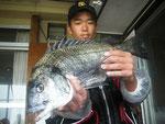 5月23日 磯釣りで中一の富永くん 良型チヌ46㎝