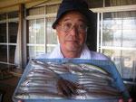 8月24日 ボート釣りで上村さん キス23㎝を頭に30匹 トラギス4匹 ベラ1匹