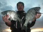 2月12日 磯釣りで花岡さん チヌ42㎝・35㎝