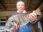 6月30日 ダゴチン釣りで石川さん 良型チヌ45㎝