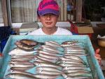5月1日 ボート釣りで森田さん キス23㎝を頭に36匹 ガラカブ、アイナメ1匹づつ
