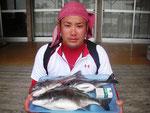 5月9日 ダゴチン釣りで藤本さん チヌ44㎝・39㎝・39㎝