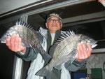 2月6日 磯釣りで前田さん 良型チヌ45㎝を頭に4匹