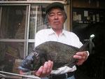 6月1日 ダゴチン釣りで北原さん チヌ45㎝