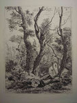 Charmier 24, les trois arbres devant la maison forestière, s.d.
