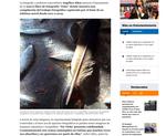El Nuevo Día (newspaper) https://www.elnuevodia.com/entretenimiento/cultura/notas/peculiar-mirada-a-lo-cotidiano-en-nuevo-libro-de-fotografia-ocho/