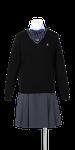 徳島科学技術高校女子合い制服(セーター着用)