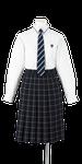 城西高校女子合い制服(長袖ブラウス着用)