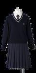 川島高校女子合い制服(セーター着用)