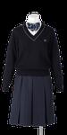 城ノ内高校女子合い制服(セーター着用)