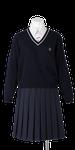 川島中学校合い制服(セーター着用)