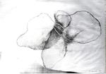 063 A2 Sonnino Franca 1979 Italia carta Xilitografia   42x29 cm