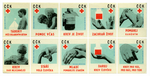 matchbox labels_health: República Checa.