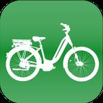 Riese & Müller e-Bike XXL in der e-motion e-Bike Welt Düsseldorf
