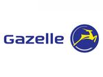 Gazelle e-Bikes, Pedelecs und City e-Bikes kaufen und probefahren bei e-motion