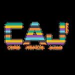Création de logo Dans le 1000, agence de comminication en Loir-et-Cher, Sologne, Région Centre Val de Loire - Association de centres de loisirs et d'animations Pruniers en Sologne