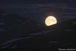Vollmond / Fullmåne