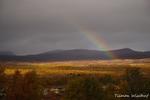 Regenbogen über / Regnbue over Fokstumyra