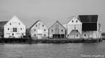 Der Hafen von Runde / Runde havn