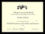 TEAM Practiotioner 1 Zertifikat Verhaltensberater