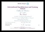 IDBTS Zertifikat Hundetrainer