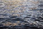 02/2017 Öl auf Leinwand oil on canvas 180*120 PB po
