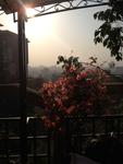 Rooftop Yoga Class, Kathmandu