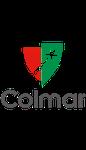 La ville de Colmar