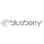 Statégie digitale, community management Facebook, Instagram, Influence Marketing, création de contenus photo et blogging pour Blueberry Glasses, une gamme innovante de lunettes anti-lumière bleue et anti-éblouissement pour la conduite de nuit