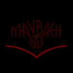 Maybach LP- E Gitarren