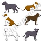 Stafford Terrier