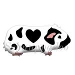 Herzmeerschweinchen