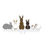 Fünf Kaninchen