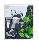 'Koalas are beautiful #1' Formaat (bxhxd): 50x60x2