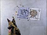 Le chien pense à Pollock - huile, mouchoirs peints et divers sur bois préparé - 122 x 160 cm - 1999